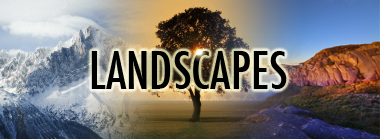 sjoeman_landscapelb